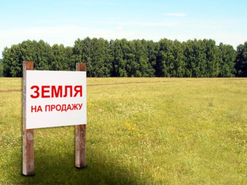 Возможности приобретения сельскохозяйственных земель в Подмосковье